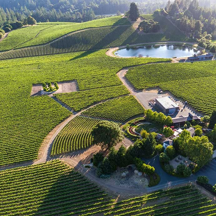 Goldeneye aerial photo over the property and vineyards