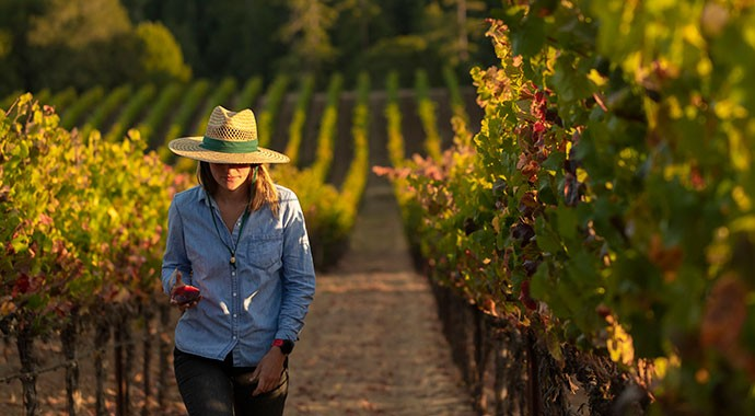 Winemaker Katey Larwood