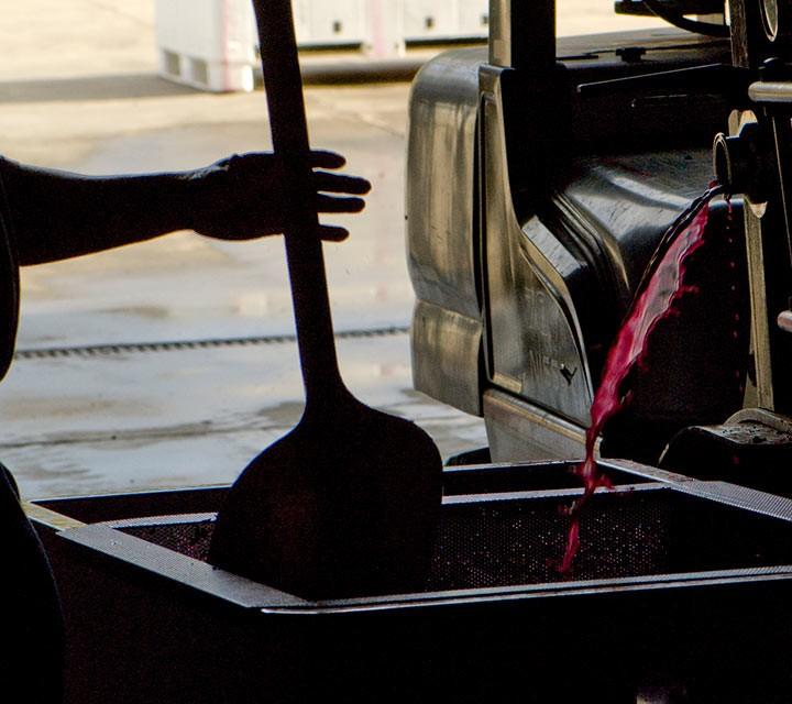 Goldeneye Winemaking